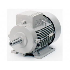 Motor điện Siemens